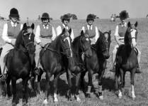 ponyclubteam