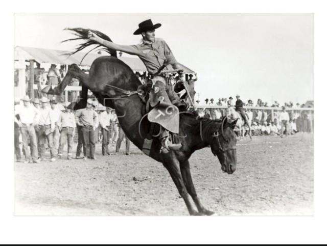 -----------------rodeobill