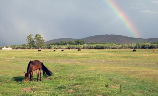 rainbow-horse-mongolia.jpg