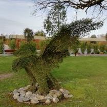 Topiary eagle